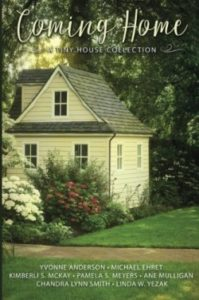 Coming Home Tiny House Collection with multiple authors